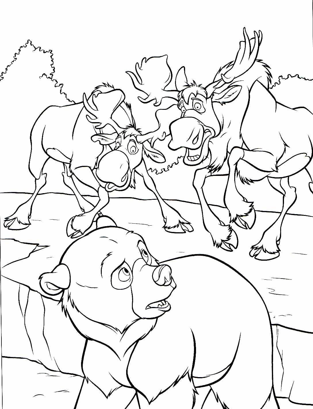 coloriage � dessiner gratuit frere des ours