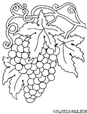 Dessin fruit et legumes rigolo - Fruits coloriage ...