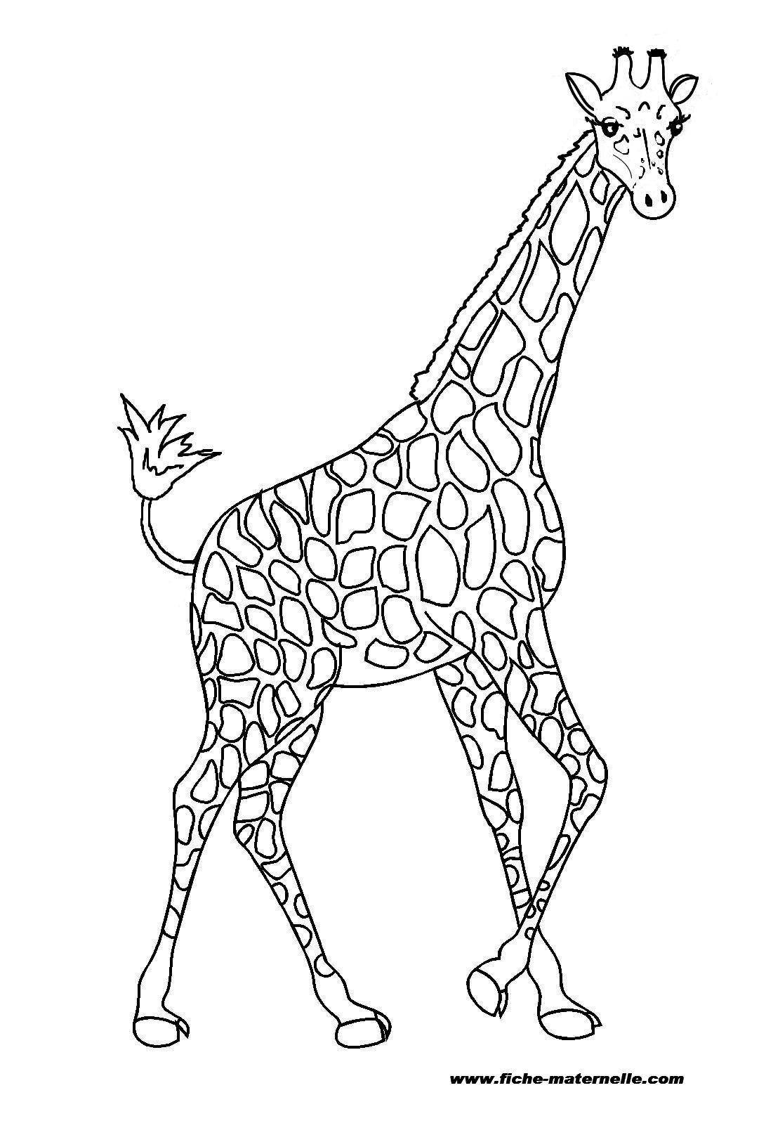 20 dessins de coloriage girafe imprimer imprimer - Girafe a imprimer ...