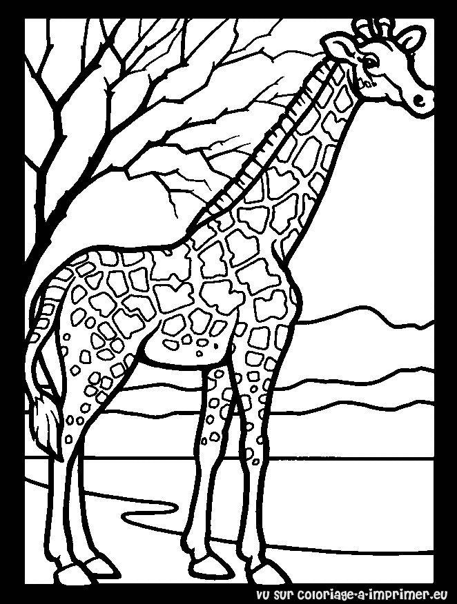 dessin girafe rigolote a imprimer gratuit