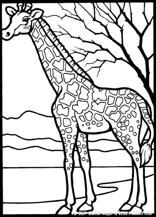 coloriage petshop girafe