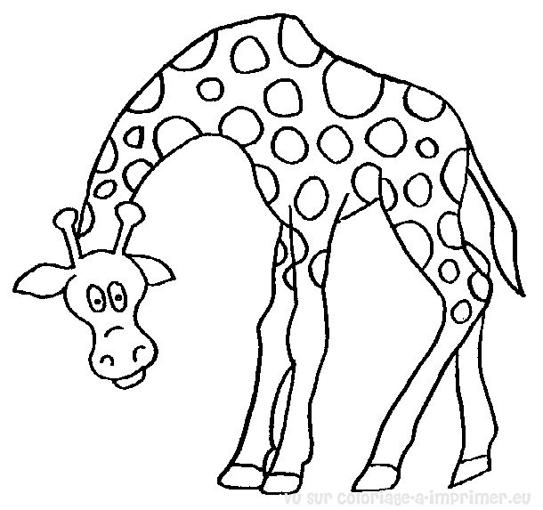 dessin à colorier girafes imprimer