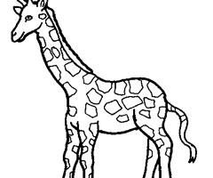 dessin à colorier girafe rigolote
