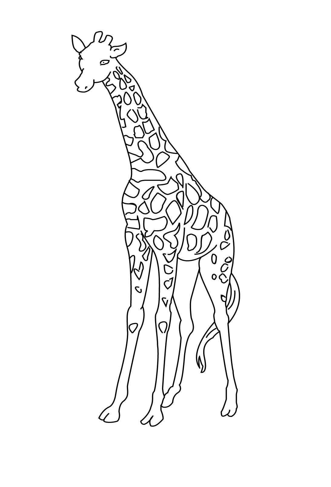 coloriage toise girafe