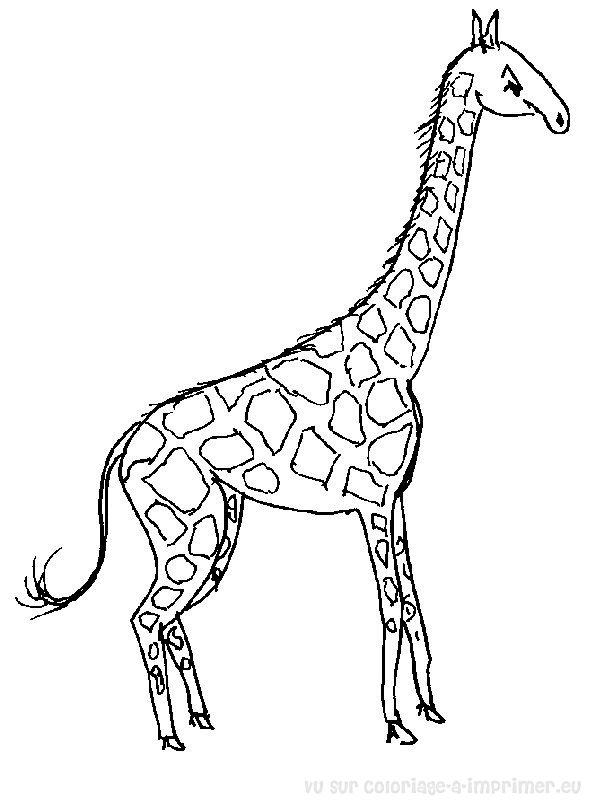 Coloriage ã Dessiner Girafe Rigolote