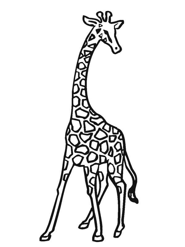 Coloriage girafe facile - Dessins girafe ...