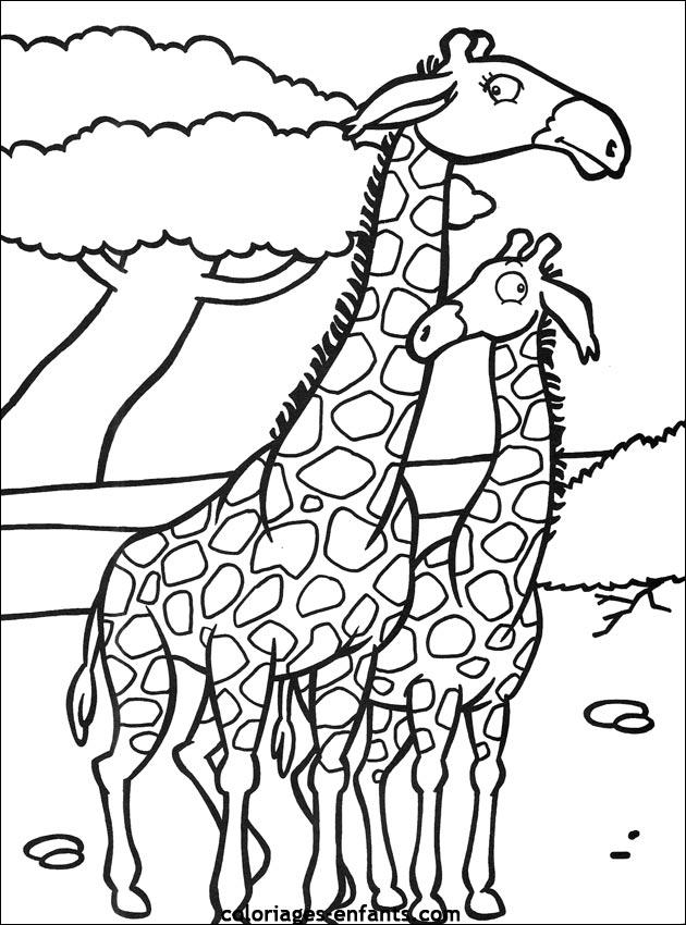 coloriage à dessiner gilda la girafe