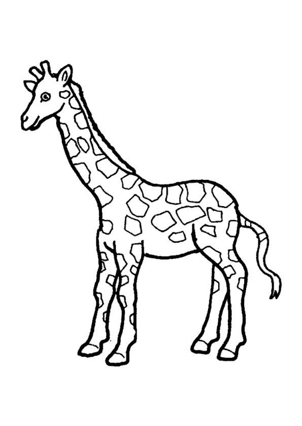 coloriage à dessiner de girafe en ligne