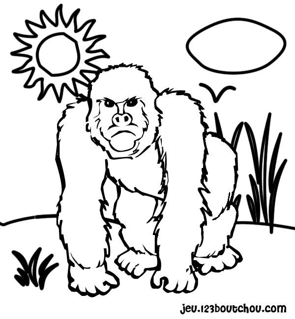 Dessin gorille imprimer - Coloriage petit singe ...