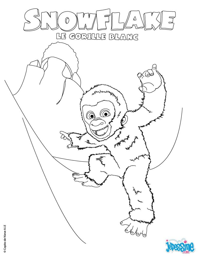 coloriage gorille gratuit