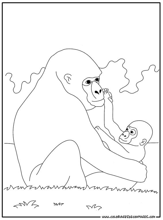 Dessin dragon ball z gorille - Gorille coloriage ...