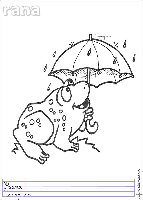 Dessin grenouille maternelle - Grenouille a colorier ...