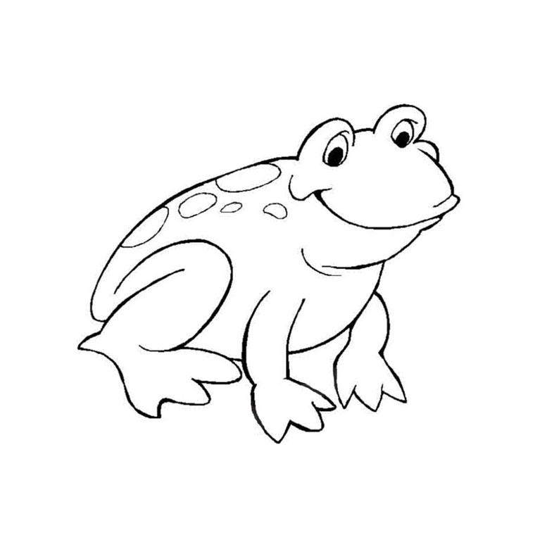 dessin à colorier grenouille en ligne