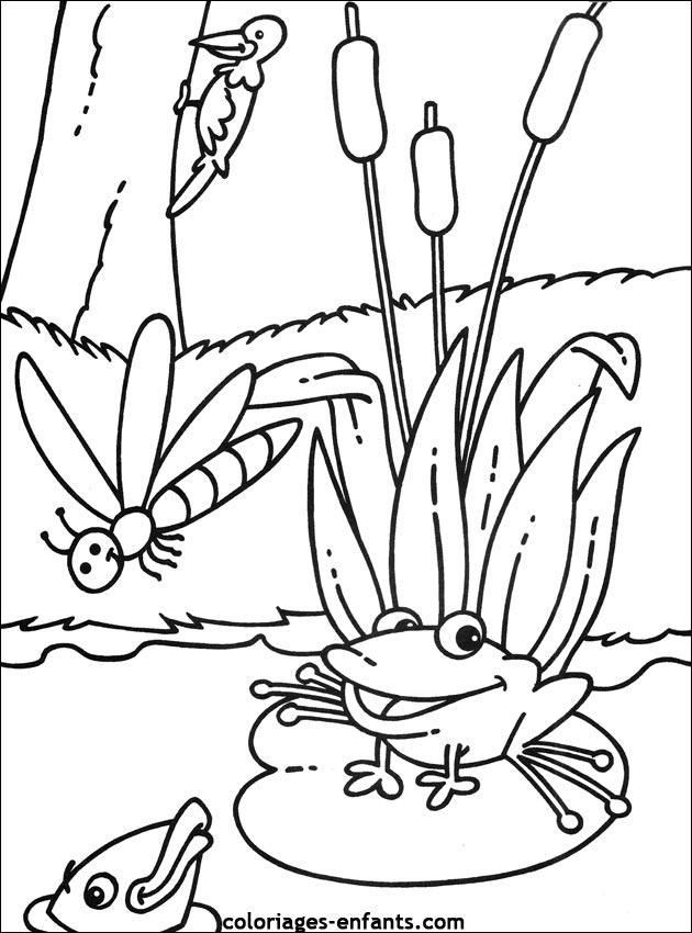 coloriage princesse tiana grenouille