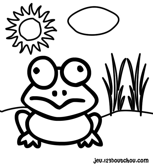 coloriage grenouille verte