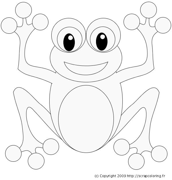 dessin grenouille maternelle