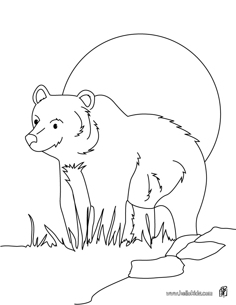 coloriage à dessiner grizzly imprimer