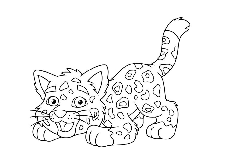 dessin animaux guepard