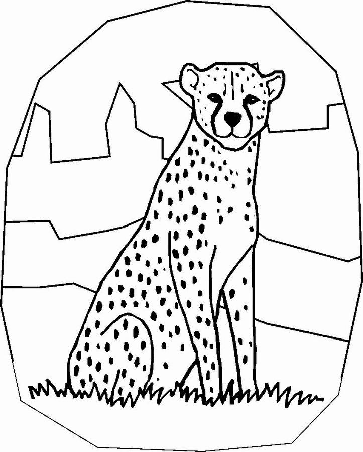 coloriage à dessiner guépard imprimer