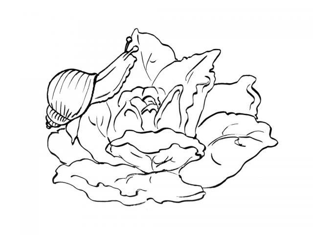 dessin à colorier gulli en ligne
