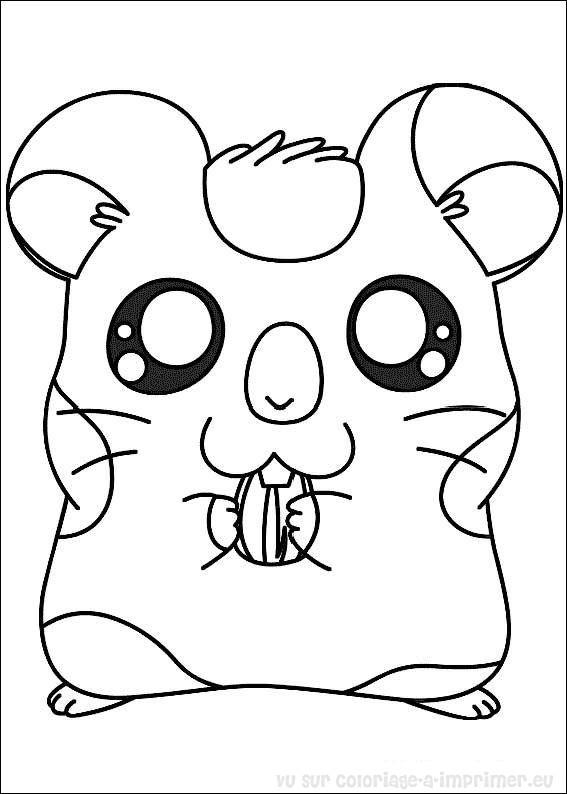 16 dessins de coloriage hamster imprimer imprimer - Hamster dessin anime ...