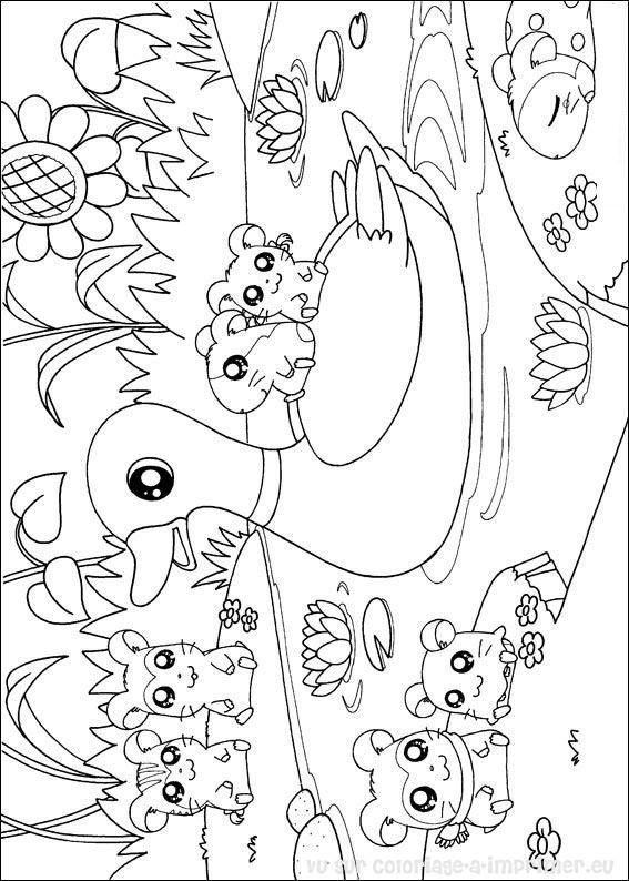 20 dessins de coloriage hamster hamtaro imprimer - Hamster gratuit ...