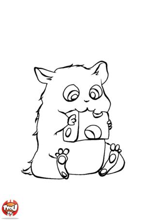 14 dessins de coloriage hamster russe imprimer - Hamster russe panda ...