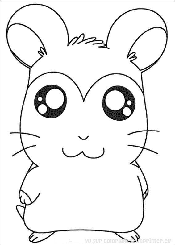 dessin de hamsters a imprimer