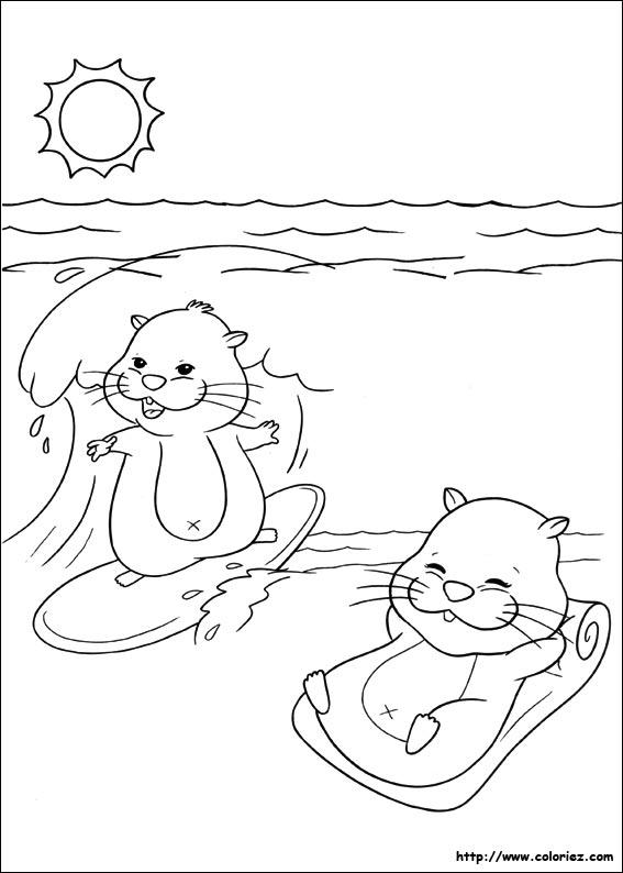 dessin à imprimer hamster