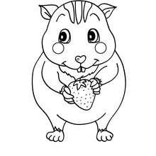 coloriage de hamsters a imprimer