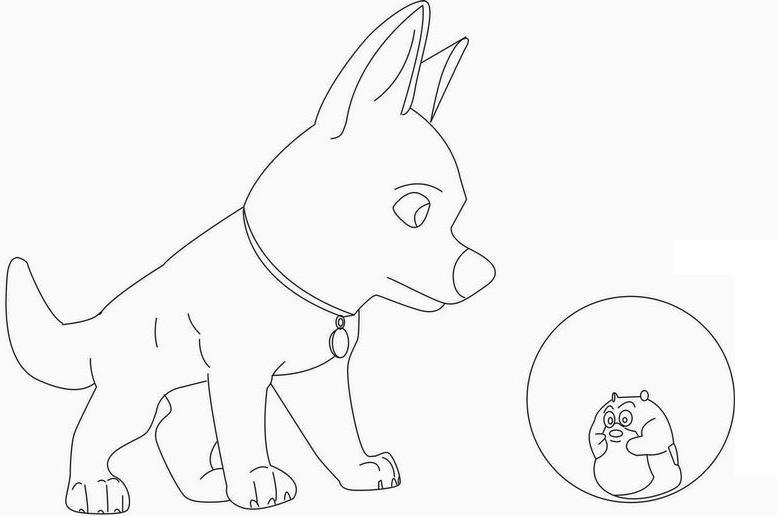 coloriage hamster a imprimer colorier