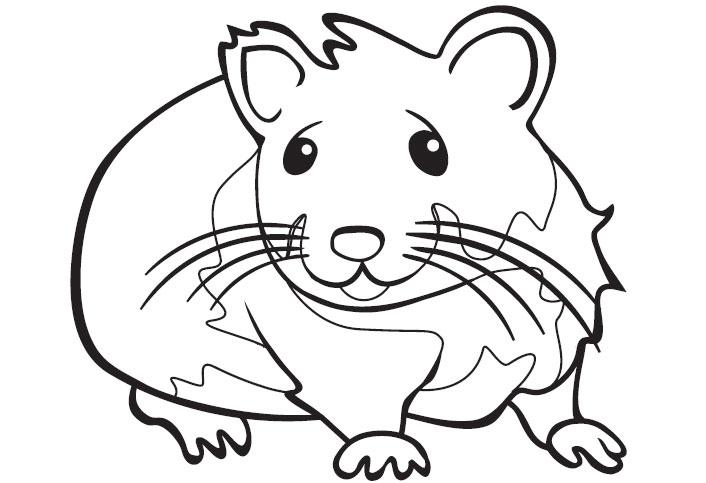 coloriage a colorier hamster