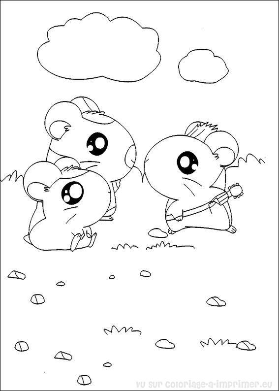 coloriage hamster hamtaro