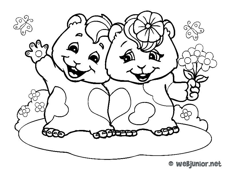 dessin de hamster facile