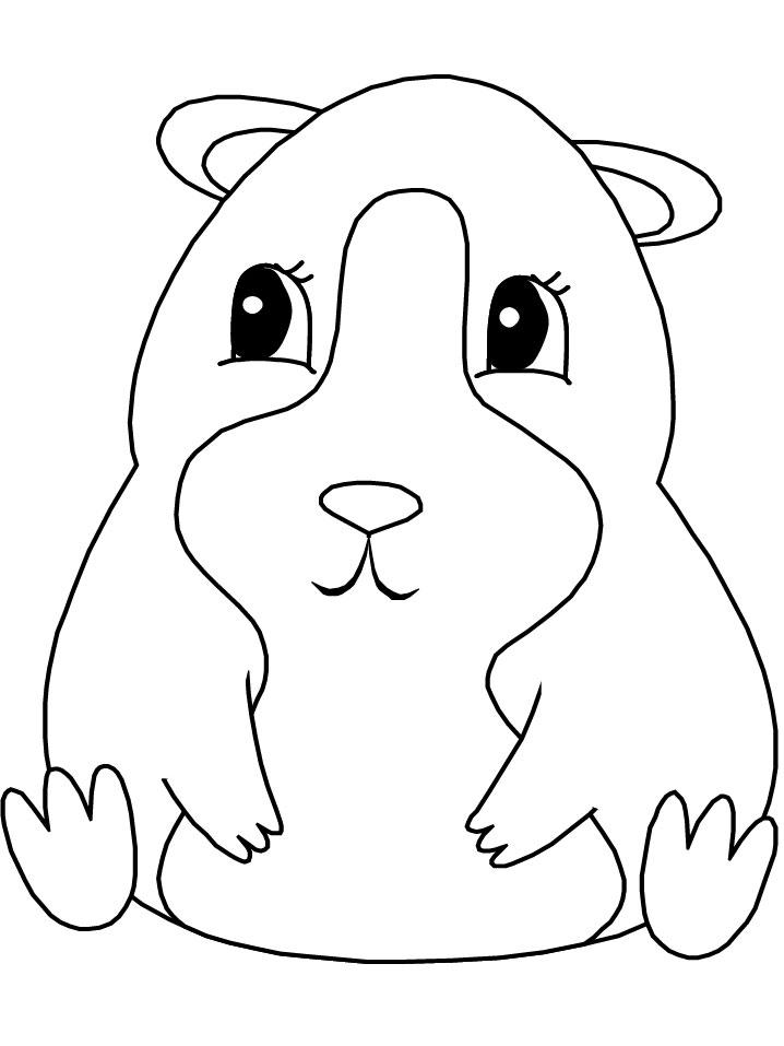 dessin a imprimer gratuit hamster