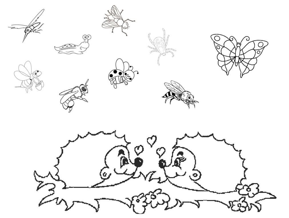 dessin magique hérisson maternelle
