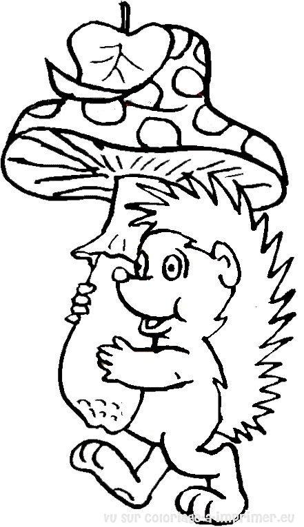 dessin à colorier hérisson maternelle