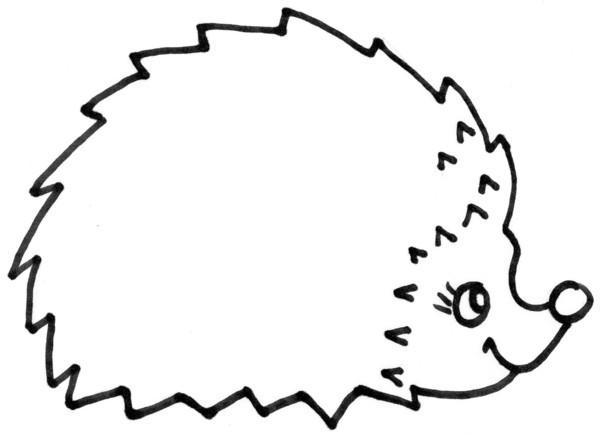 dessin à colorier hérisson sans piquant