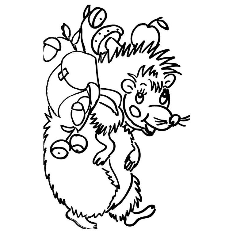 coloriage à dessiner hérisson