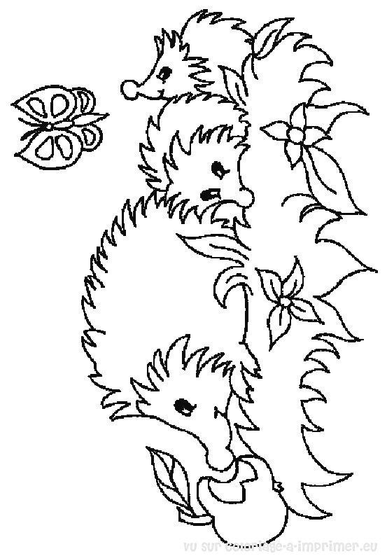 Hugo L Escargot Coloriage Herisson.Coloriage204 Coloriage Herisson A Imprimer