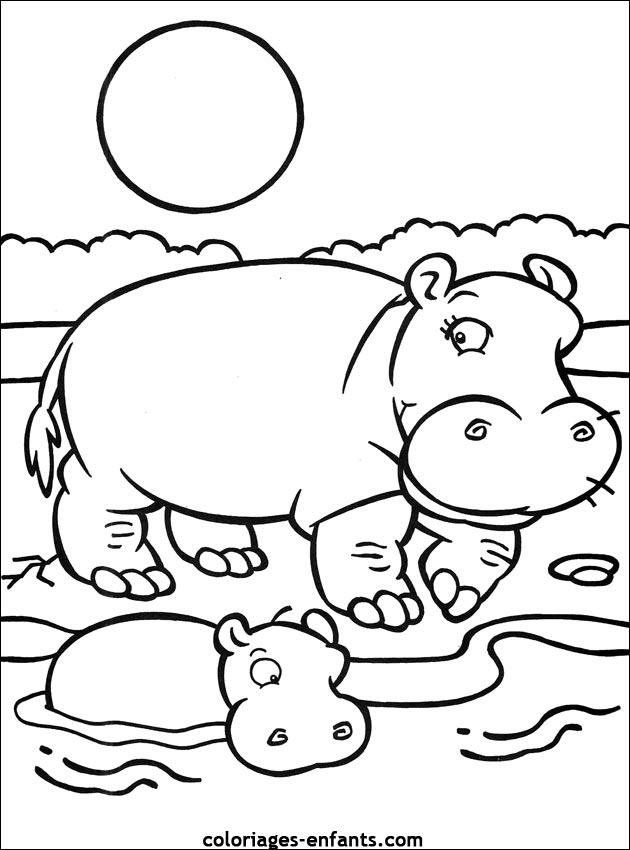 dessin hippopotame en ligne