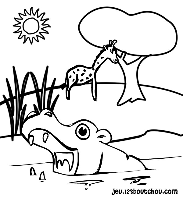 dessin imprimer hippopotame