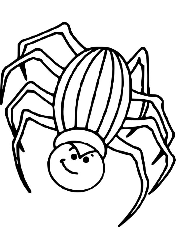 dessins insectes printemps