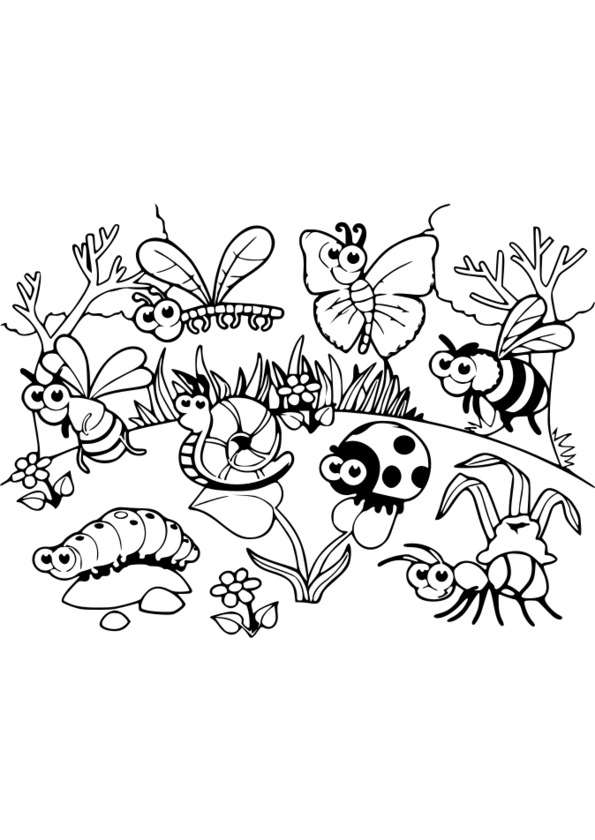 Coloriage insectes jardin for Dessin jardin