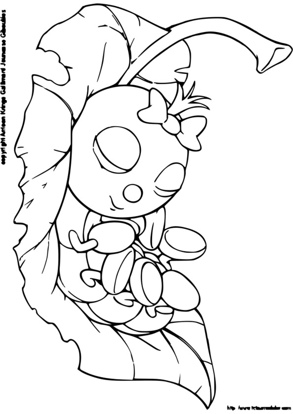 dessin à colorier insecte gendarme