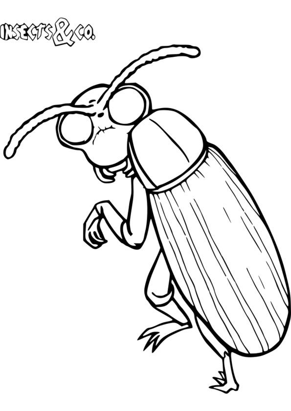 coloriage insecte gratuit