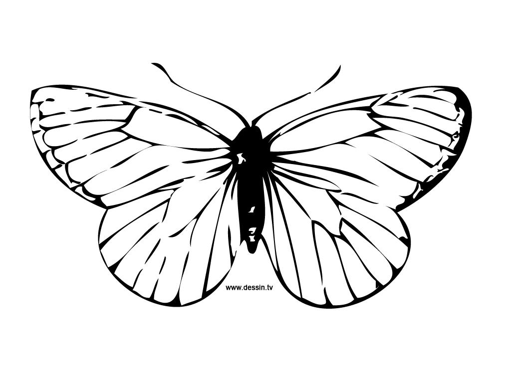 97 dessins de coloriage insectes gratuit imprimer - Dessin de petit papillon ...