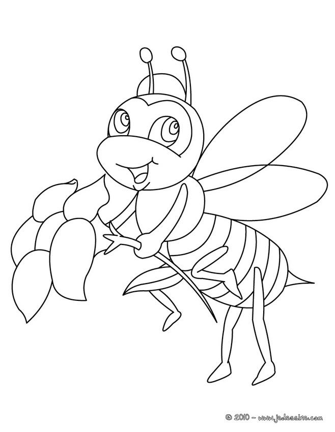 96 dessins de coloriage insectes rigolos imprimer - Coloriage insecte ...