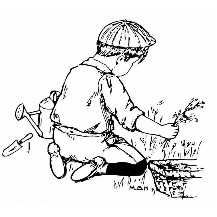 Dessin jardin imprimer for Jardin dessin