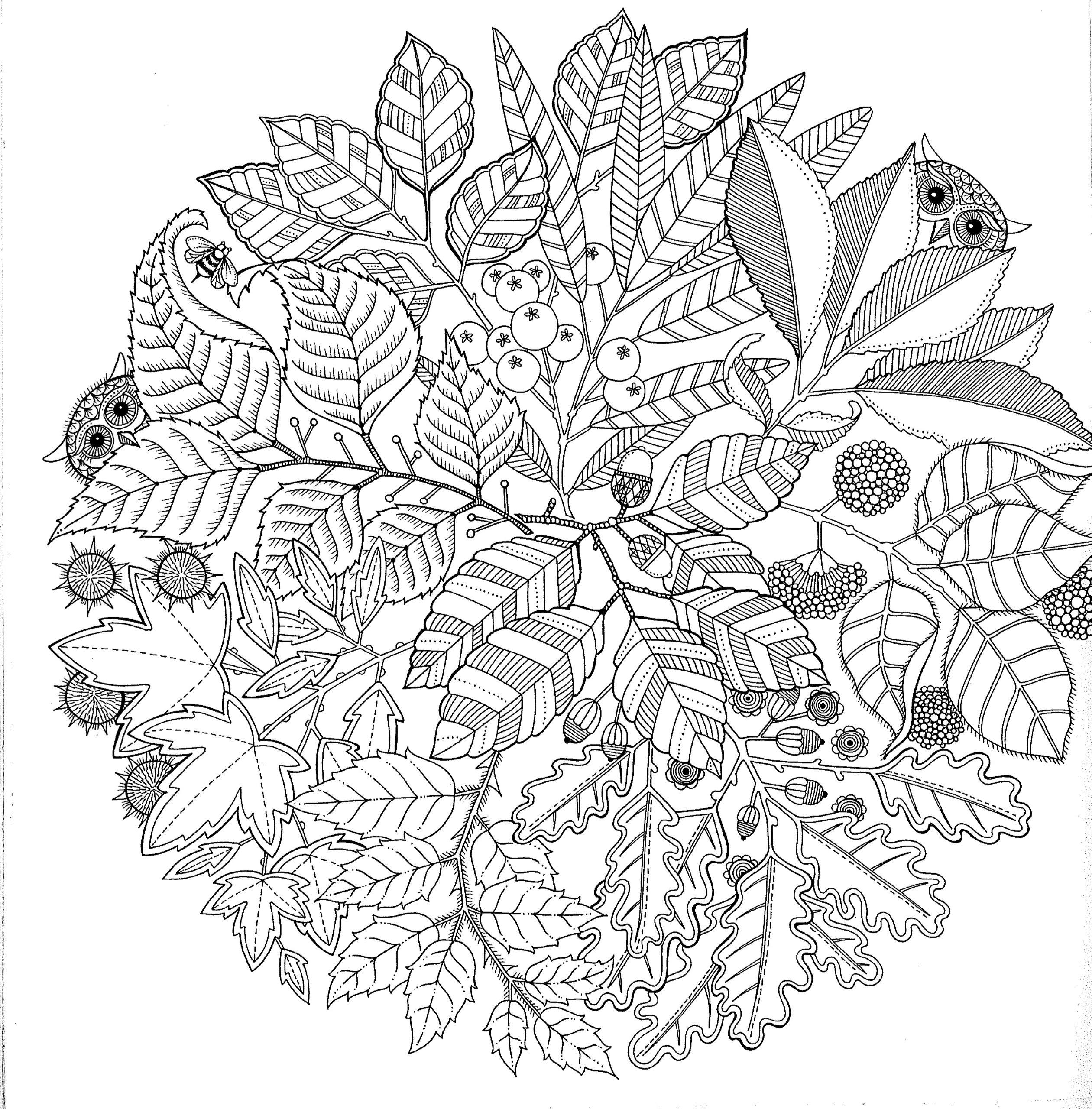 dessin à colorier jardinier jardin